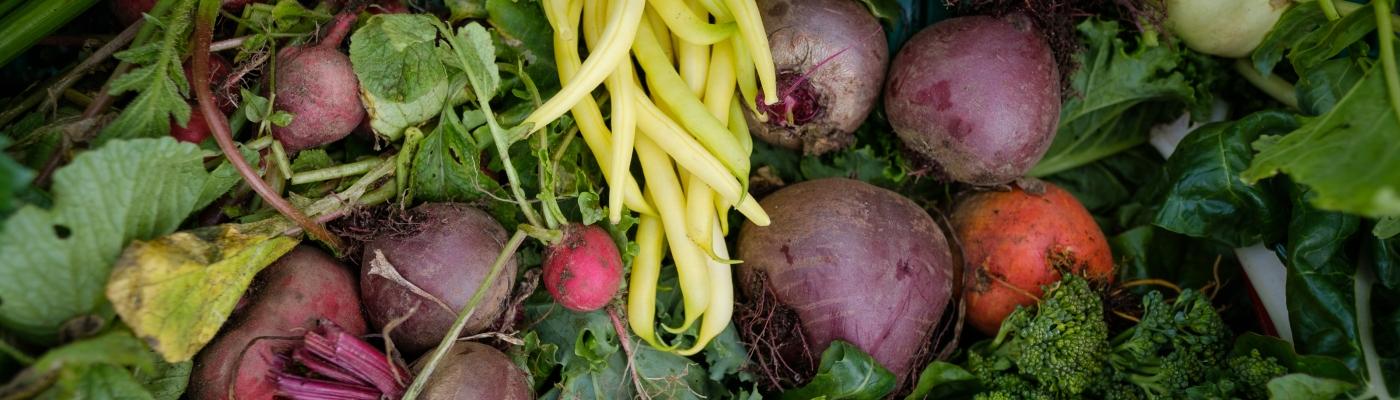 grønnsakskasser-i-trondheim