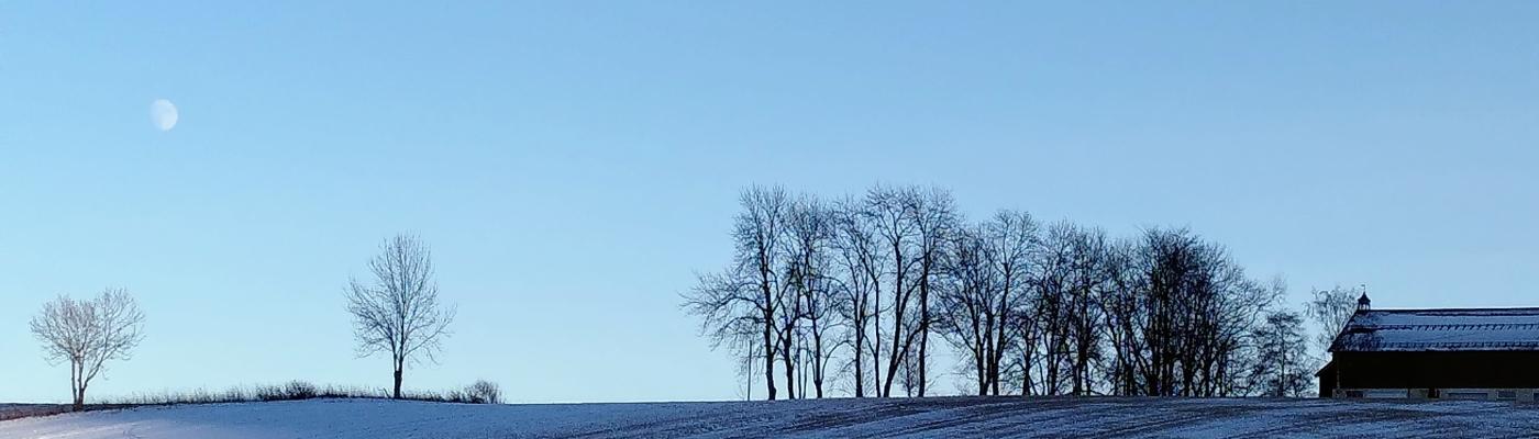 Vinteren på åkeren